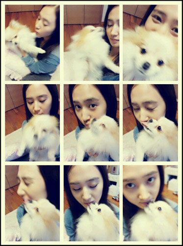 Snsd Yuri puppy selca