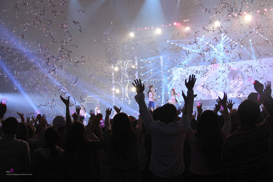 Girls Generation Japan Arena Tour 2013