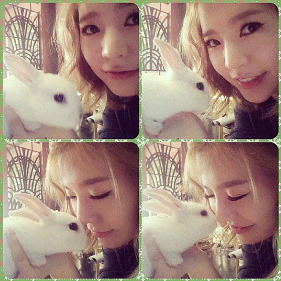 SNSD Sunny Instagram rabbit selca