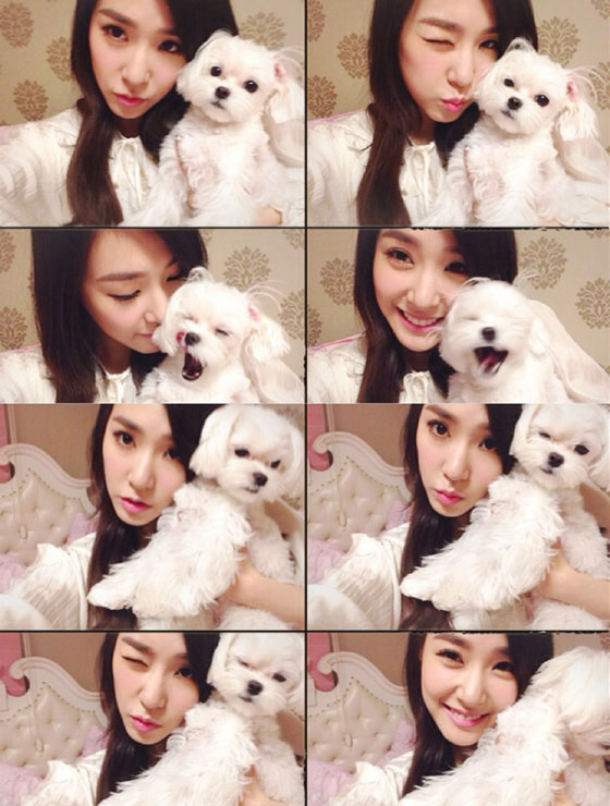 SNSD Tiffany February 2014 selca