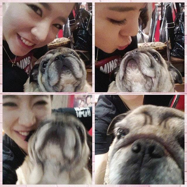 SNSD Sunny puppy Instagram selca