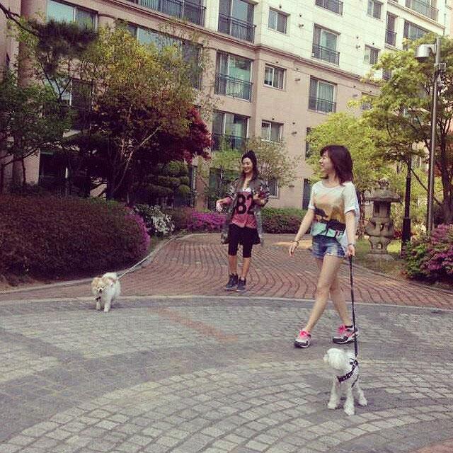 SNSD Sunny Yuri puppy dates