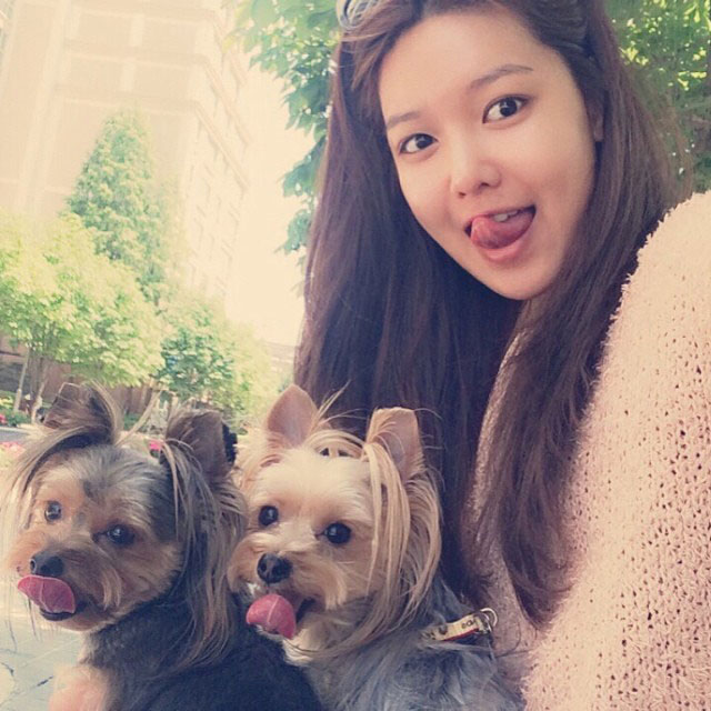 SNSD Sooyoung Instagram puppies selca