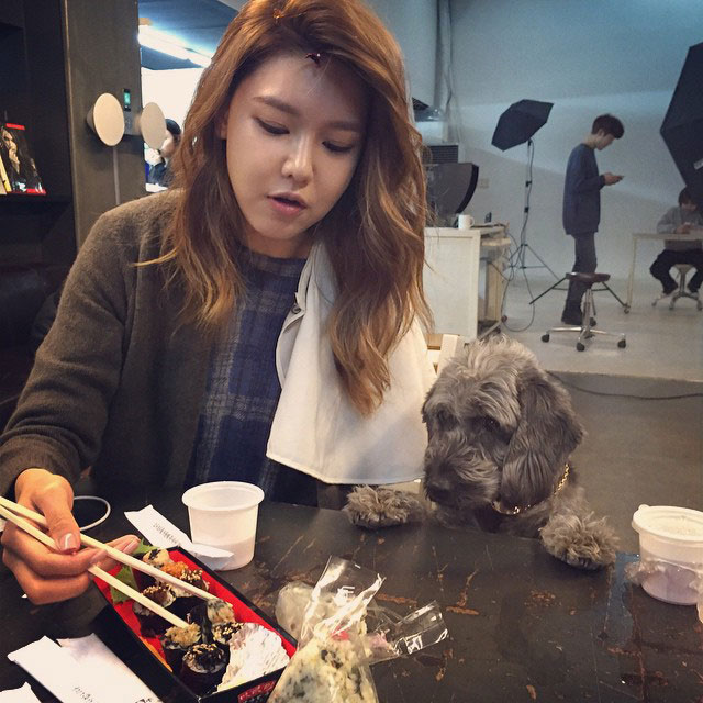 SNSD Sooyoung Instagram pet and food